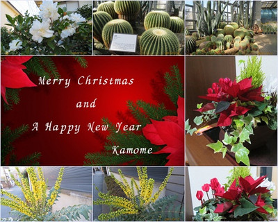 Photoscape_xmas_card